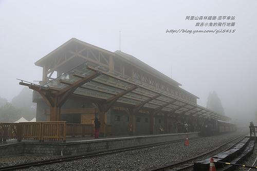【阿里山沼平車站】浴火中重現鐵道風華 蒸汽火車鳴笛宣告正式啟用