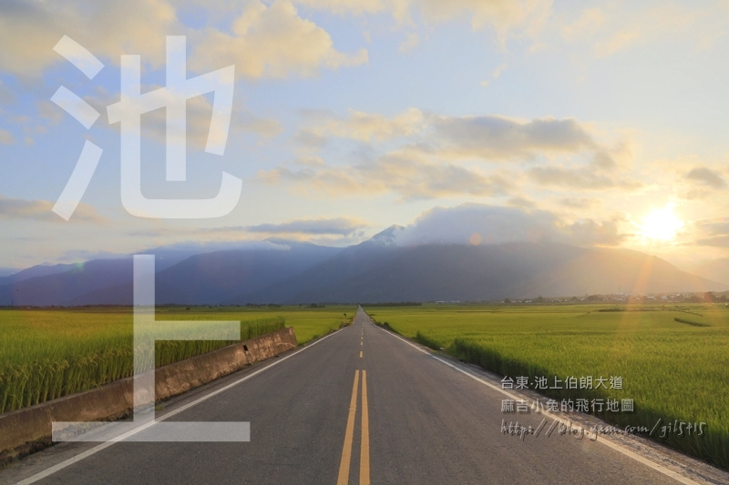 台東池上「伯朗大道/天堂路/金城武大道」長榮航空新廣告【I SEE YOU】拍攝場景