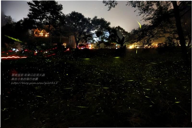 2013 若蘭山莊螢火蟲 下大雨亂亂拍 亂亂疊